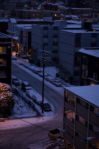 """""""Snowy"""" by g93dotnet"""